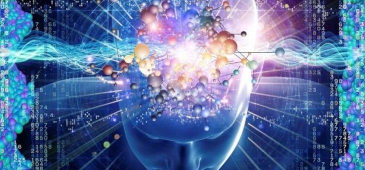 Por que alguns especialistas defendem que é incorreto dizer que alguém é inteligente