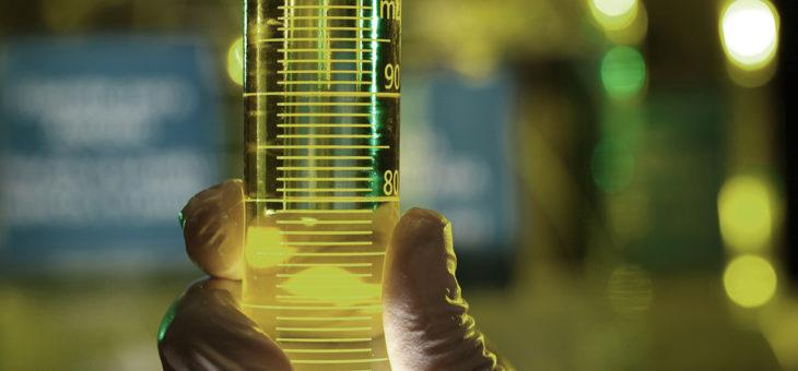Cientistas da UFCG e UFC desenvolvem combustível a partir da casca de arroz